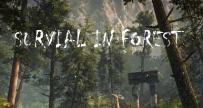 Survival in Forest 2 poster
