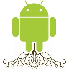 android root